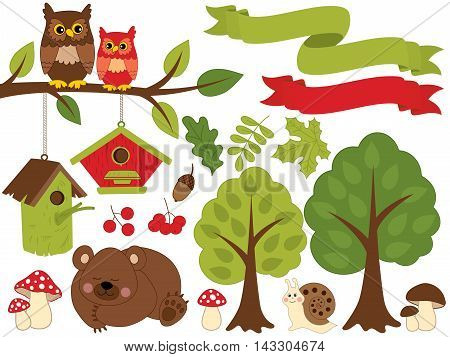 Vector summer forest set with bear, owls, trees and leaves
