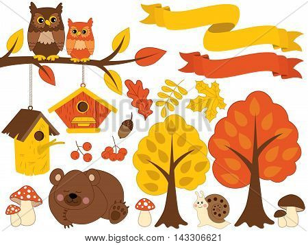Vector autumn forest set with bear, owls, trees and leaves