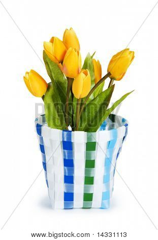 Pot of colorful tulips isolated on white