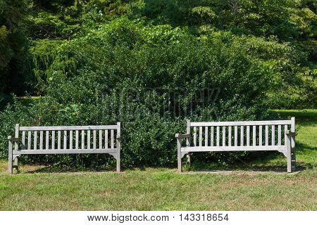 Two empty benches in a quiet green park