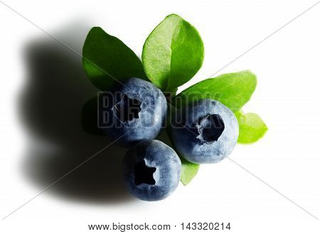 close up of blueberries isolated on the white background.