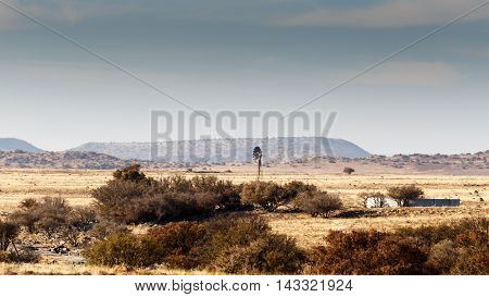 Windmill In The Field - Cradock Landscape