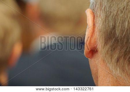 Man Ear. Rear View
