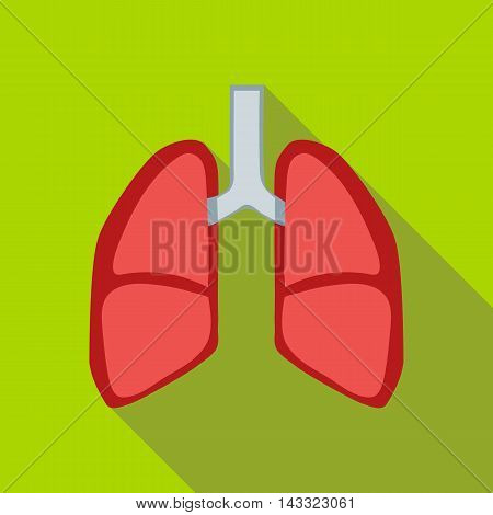 Lungs icon in flat style with long shadow. Human organs symbol
