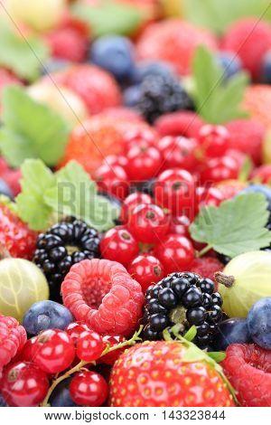 Berry Fruits Fresh Berries Collection Strawberries, Blueberries Raspberries Leaves Copyspace