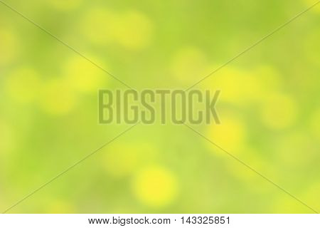 green natural abstraction with yellow spots like bokeh