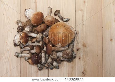 bunch of boletus mushrooms on wooden background