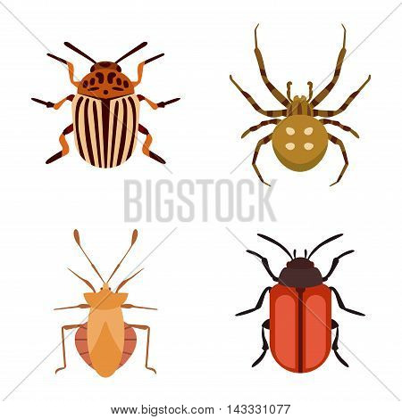 Insect icons flat set isolated on white background. Ladybird, butterfly, beetle vector ant