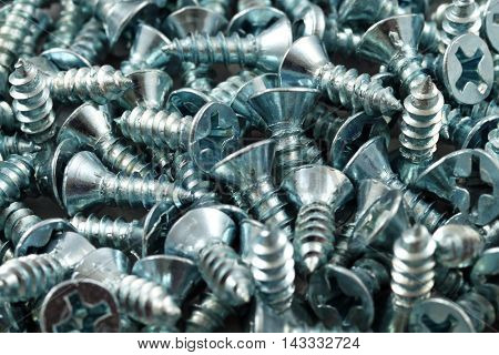 An extreme close up of wood screws