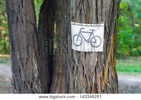 Bicycle Sign On The Tree