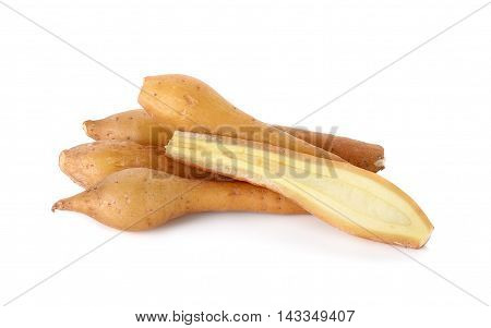 Finger Root Isolated On The White Background