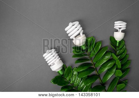 Three Led Lamp With Green Leaf, Eco Energy Concept, Close Up. Light Bulb On Grey Background. Saving