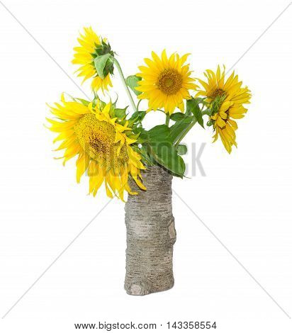 Bouquet of flowers of sunflower in a ceramic vase stylized tree trunk on a light background