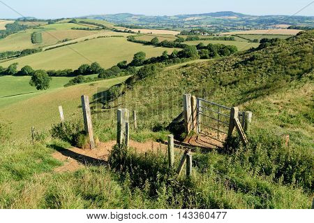 Gate at public footpath in Marshwood Vale Dorset