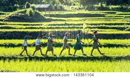 Boy Scouts in a Campsite, Countryside of Thailand