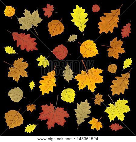 Set Of Colorful Autumn Leaves. Design Elements Vector Illustration. Leafs In Random. Black Backgroun