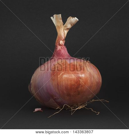 The onion has a substantial nutritional value thanks to the presence of mineral salts and vitamins especially vitamin C but also contains many enzymes that aid digestion and stimulate the metabolism
