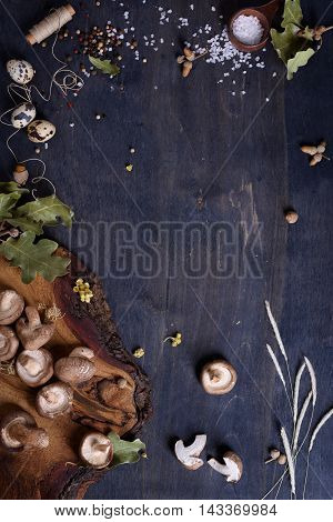 Shiitake mushrooms with herbs and spices. Fall menu ingredients. Preserves making background. Top view, copy space.