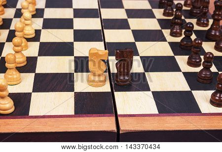 wooden chess and horse isolated on the white background