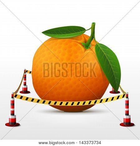 Orange fruit located in restricted area. Orange with leaves surrounded barrier tape. Qualitative vector illustration about orange, agriculture, fruits, cooking, farming, gastronomy, gardening, etc