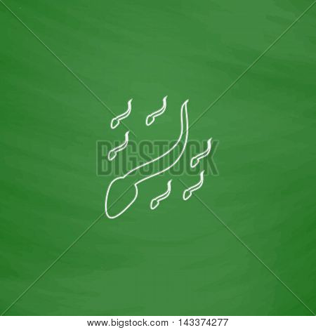 spermatozoon Outline vector icon. Imitation draw with white chalk on green chalkboard. Flat Pictogram and School board background. Illustration symbol