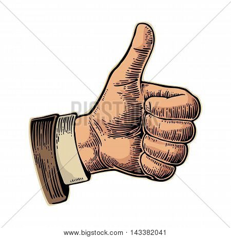 Hand showing symbol Like. Making thumb up gesture. Hand drawn design element. Vector color vintage engraved illustration isolated on white background. Sign for web poster info graphic