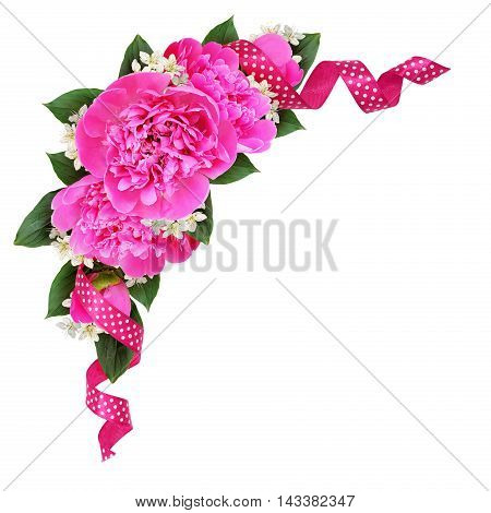 Corner decoration with pink peony flowers and silk spotted ribbon isolated on white