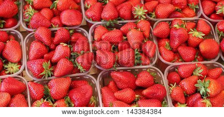 background from freshly harvested strawberries,strawberries in box