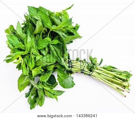 Bunch Of Fresh Cut Green Mint Herb On White