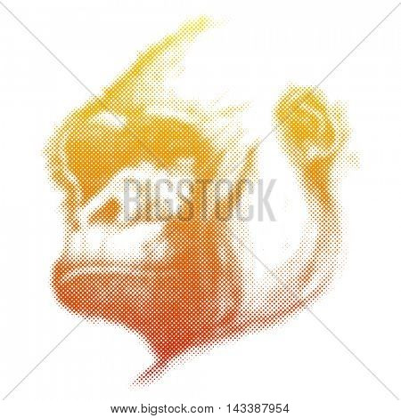Monkey Face Hand drawn Vector illustration.