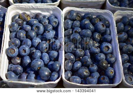 closeup of blueberries in a bowl at a farmers market