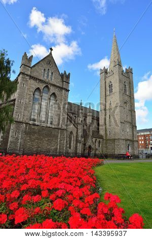 Saint Patrick's Cathedral in Dublin and bright red flowerbed.