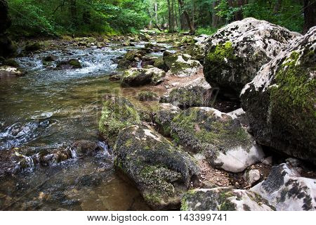 Water stream running over mossy rocks on a sunny day