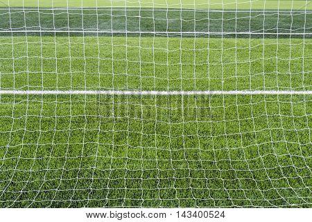Goal a soccer net  with green grass field