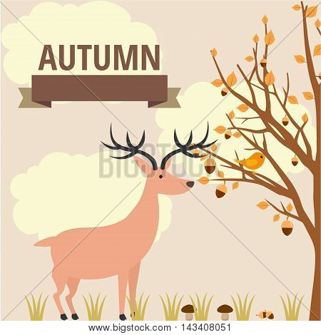 vector autumn illustration of flora and fauna in the forest