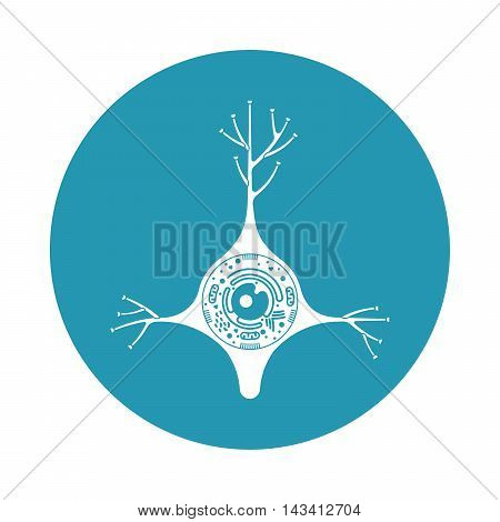 Isolated neurone cell biology icon. Neurone cell anatomy structure vector illustration. Axon cell body.