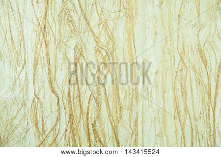 Old mulberry paper texture background with bamboo leaves texture background.