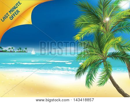 Last minute offer - summer seaside background with beach and palm trees.
