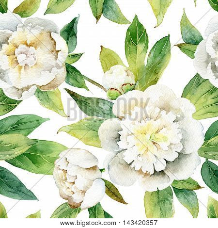 Seamless pattern with white peonies and green leaves. Watercolor illustration