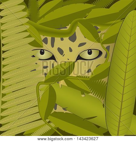 predator prowling in a thick tropical forest with green leaves