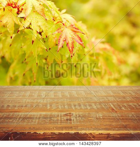 Autumn background with autumn leaves and wooden table