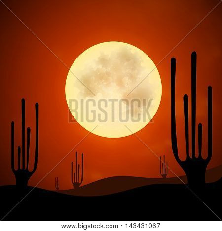 Desert heat night moon silhouette cactus sand