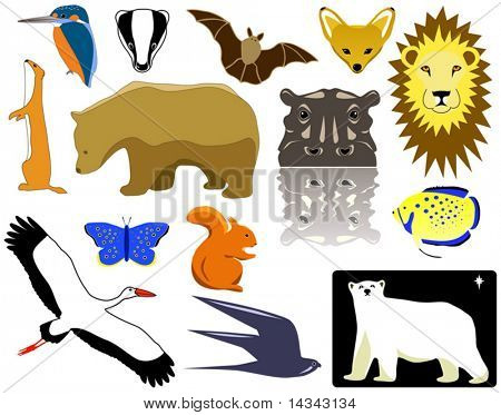 Selection of vector animal designs and pictograms