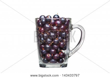 Black Currant In A Glass Cup Isolated On White Background