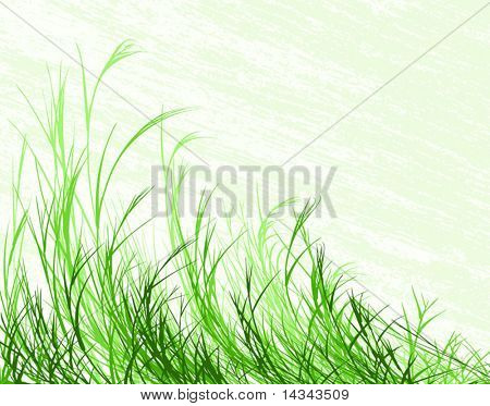 Editable vector illustration of long grass with grunge background on separate layer