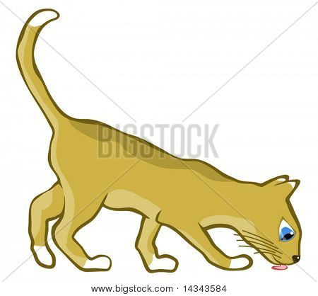 Editable vector illustration of a young cat licking