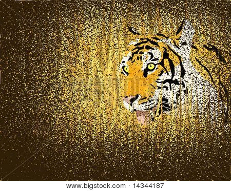 Vector illustration of a tiger in grass with grunge on separate layer