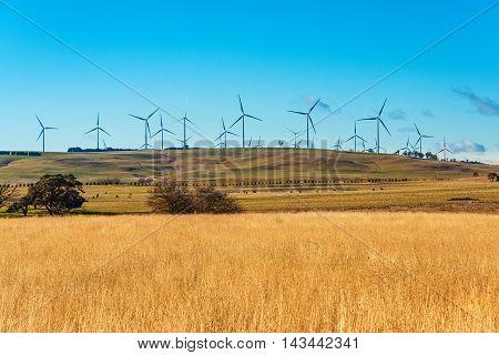 Windmill Electricity Turbine