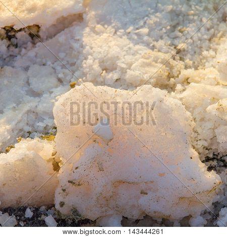 Backlit crusts of sea salt at Larnaca Salt Lake in Cyprus