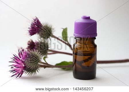bottle with вurdock (castor agrimony) оil agrimony branch